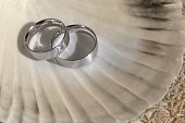 Two wedding rings lying on a shell